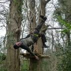 13. Squirrels Scramble - getting in a tangle