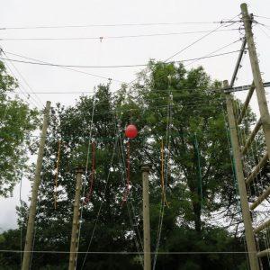 Carlton OEC – Rewire
