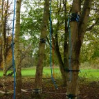 Low ropes course in trees