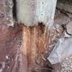 Pole rot base