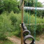 Hindleap Warren Niko-Rail Course Tyre element